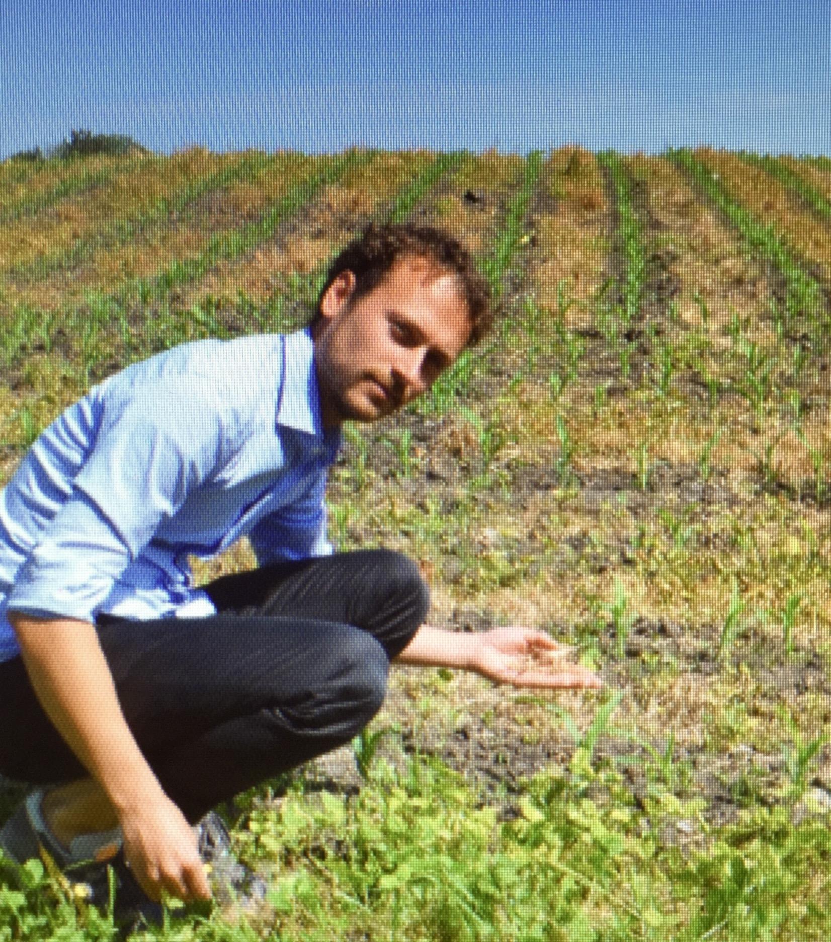 """""""Kein Glyphosat auf Vorarlbergs Feldern!"""" Der Landwirtschaftssprecher der Grünen in Vorarlberg, Daniel Zadra, auf einem Feld zwischen Lustenau und Hohenems, auf das Glyphosat gespritzt wurde."""