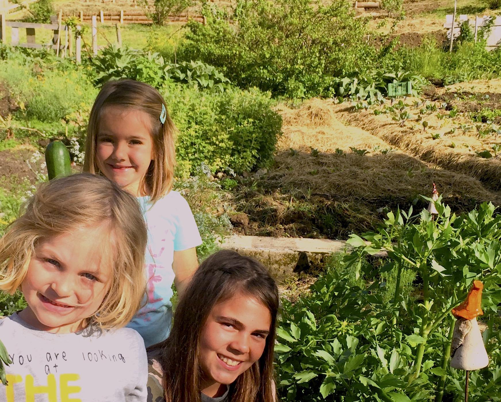 Besonders Kinder haben viel Spaß bei der Gartenarbeit - hier auf dem Garten Eden Permakulturhof in Hittisau - und begreifen von Grund auf dass unser Essen nicht im Regal der Supermärkte wächst