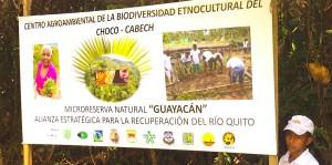 Schüler und Jugendliche der indigenen und afrokolumbianischen Bevölkerung am Rio Atrato, seinen Zuflüssen und im Quellgebiet, setzen sich für Biolandwirtschaft und den Schutz des Wassers und des Regenwalds ein. Verena Daum, www.progression.at, Garden Eden Organisation
